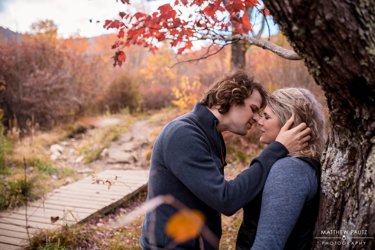 Blue Ridge Parkway engagement photos in the fall